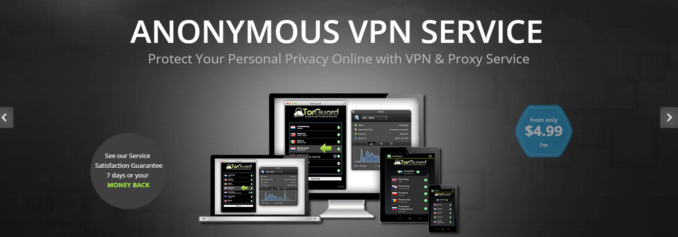 Best VPNs for Torrenting and P2P
