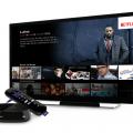 How to Watch Netflix US on Roku