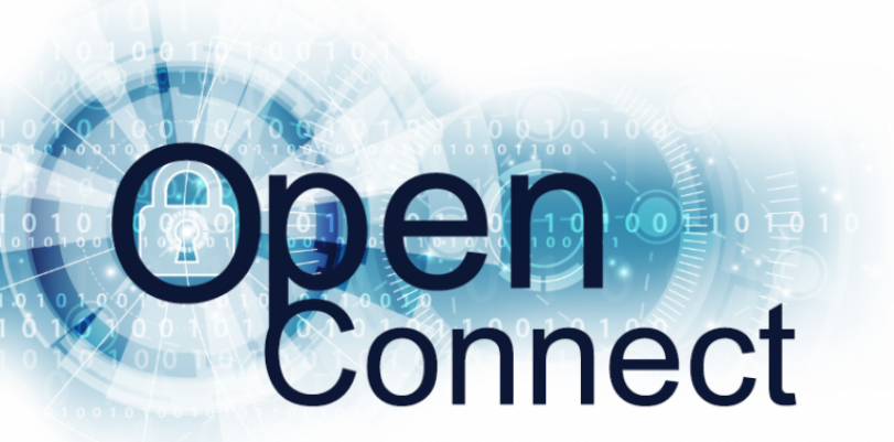 What Is the Best OpenConnect VPN Provider?