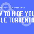 How to Hide Your Torrent IP Address : The Easy Guide