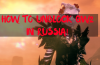 How to Unblock Guild Wars 2 in Russia